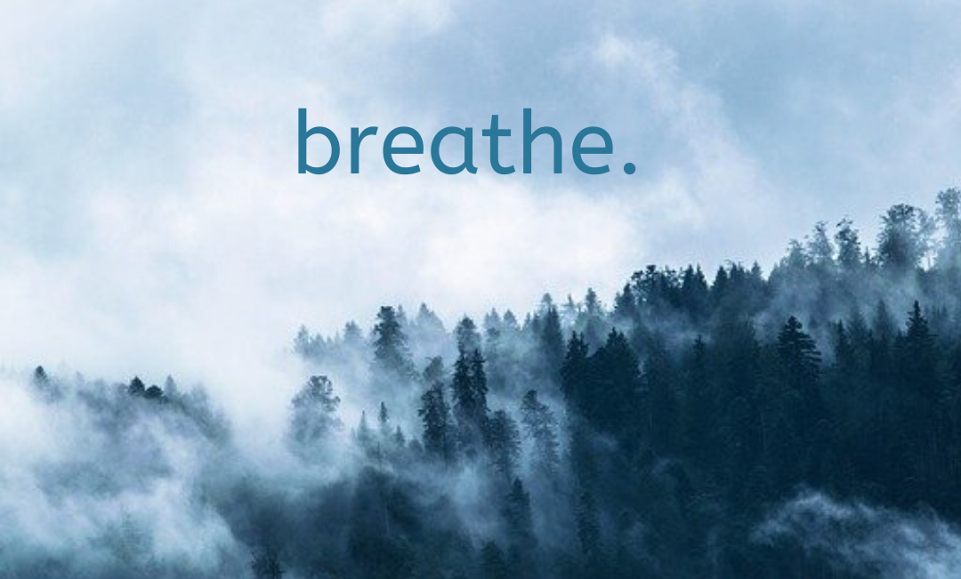 Anxiety Coach Tip #1: Breathe